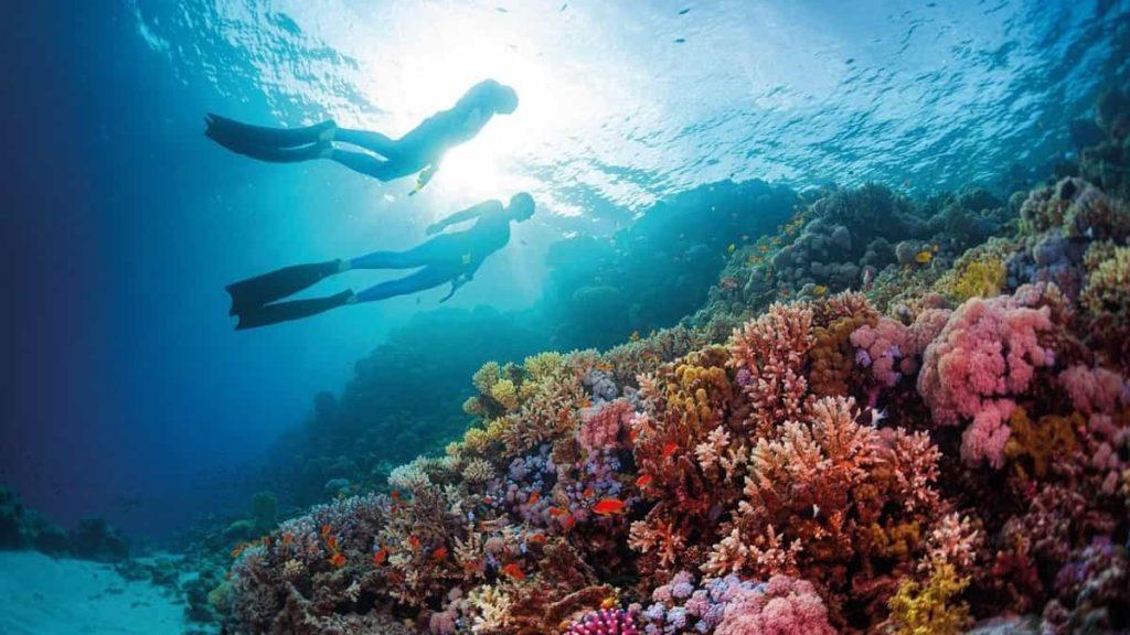 Viaggio all'estero per single a Marsa Alam meravigliosa località balneare del Mar Rosso