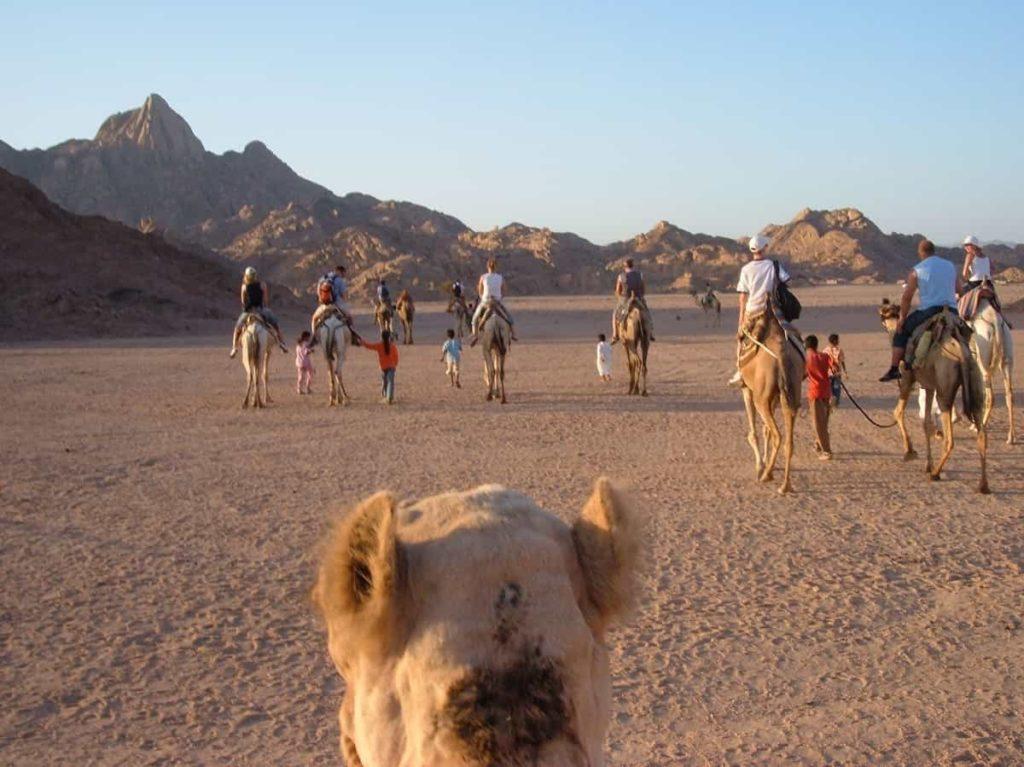 Sharm el Sheikh viaggi per single